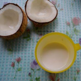 How to make Coconut Milk, Homemade Coconut Milk