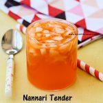 Elaneer sharbhath / Nannari Tender Coconut Sharbath