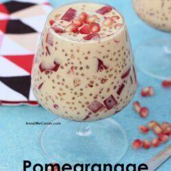 Pomegranate Sago Gulaman / Pomegranate Sago Jelly dessert