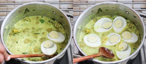 EggDrumstickstep